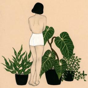 Kim botanical