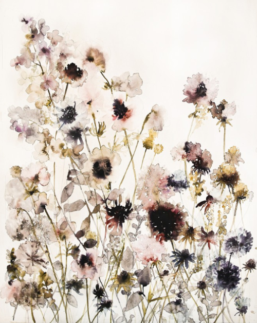 LS Wild flowers