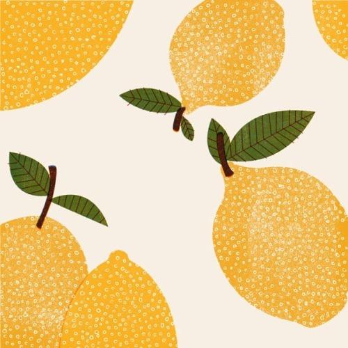 Barbara-Dziadosz_Lemons