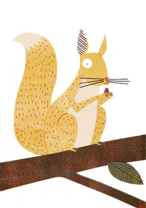 Barbara-Dziadosz_Squirrel